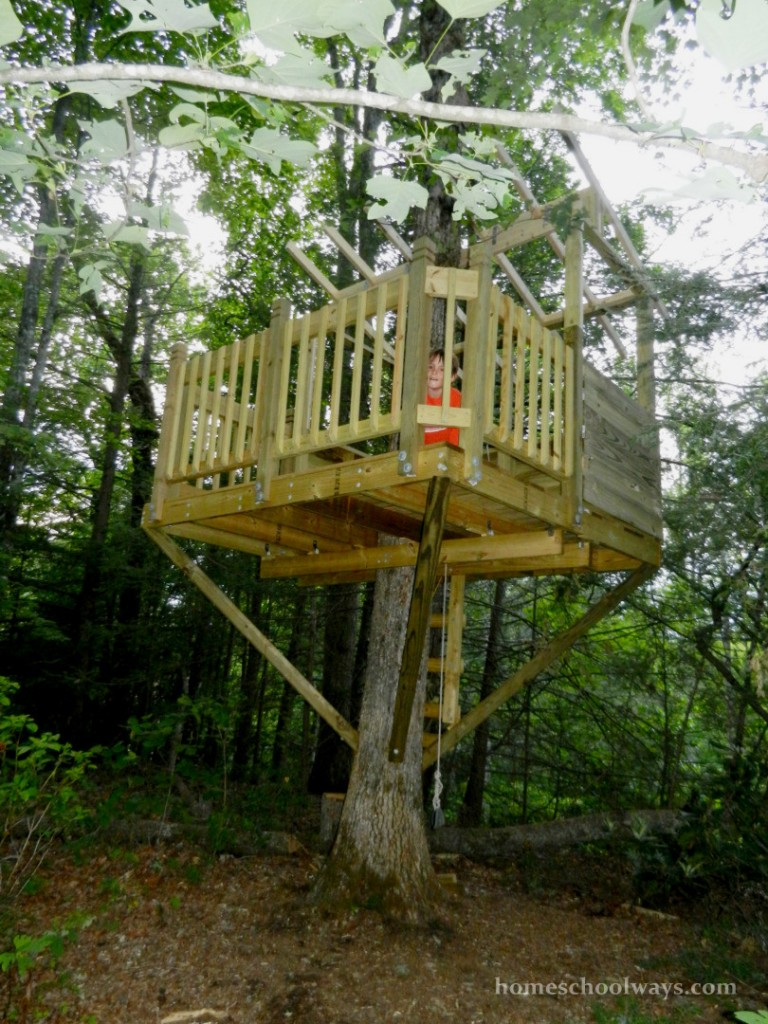 Our tree house, no roof yet