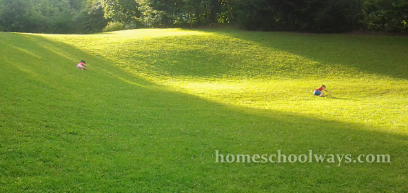 Children rolling down the grassy hill at Mills Park