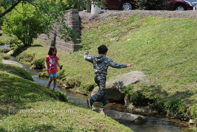 Boy and girl are having fun in the sun, around a cattail area, jumping over creek