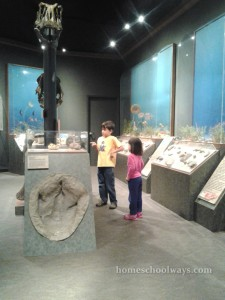Boy and girl visiting a natural history museum
