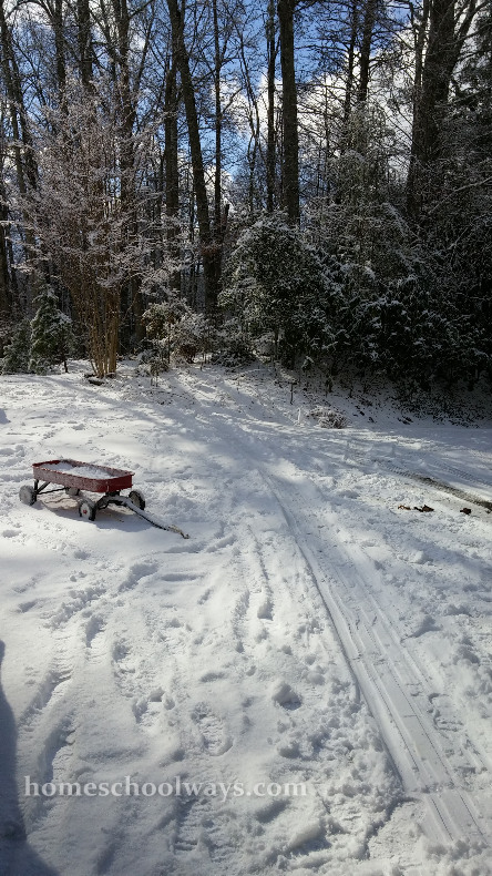 Red toy wagon in the snow