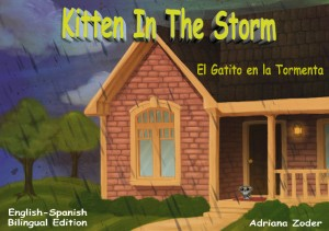 Kitten in the Storm Spanish Cover