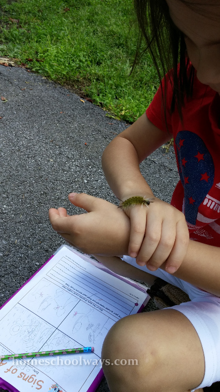 Girl playing with caterpillar