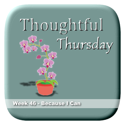 Thoughtful Thursday - Because I Can