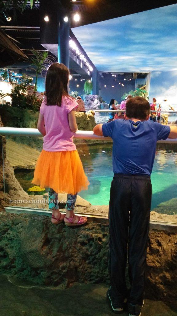 Boy and girl at Ripley's Aquarium