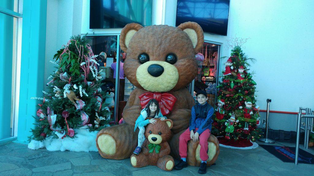 Teddy bears at the Aquarium
