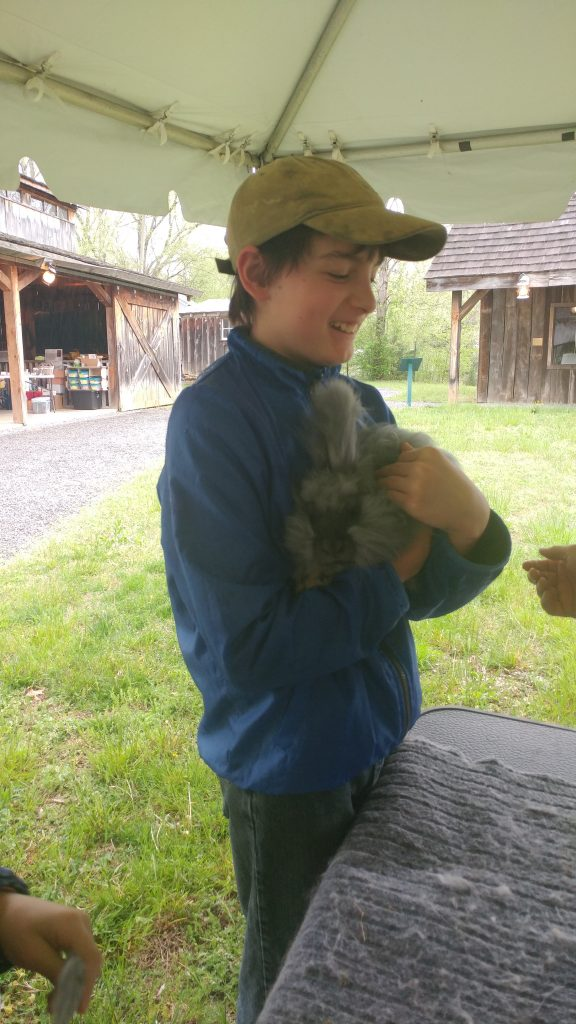 Boy holds angora rabbit