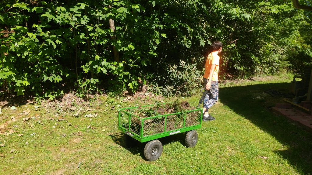 Boy pulls wagon with discarded plants
