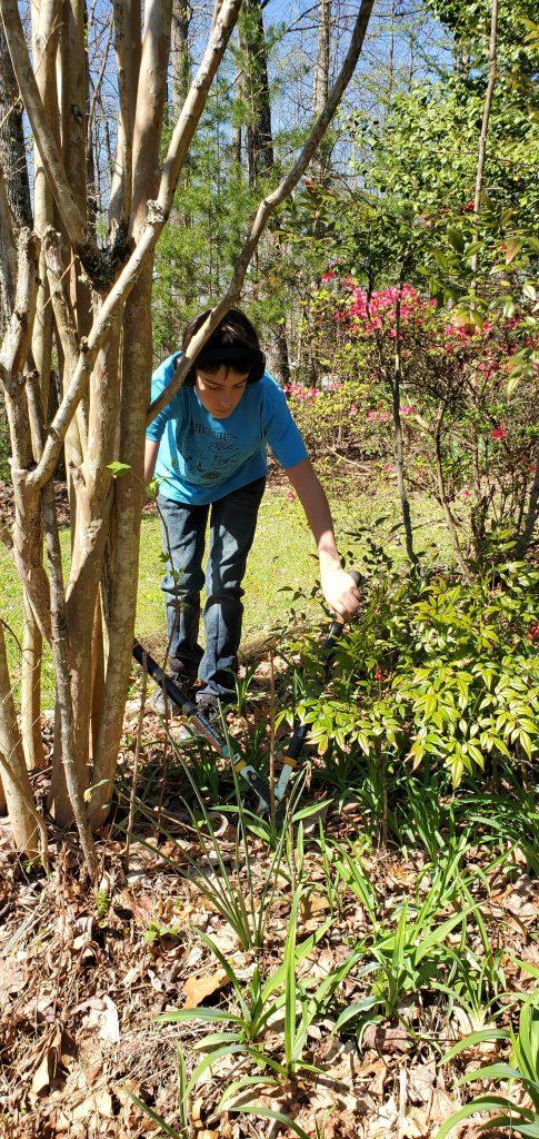 Boy works in yard